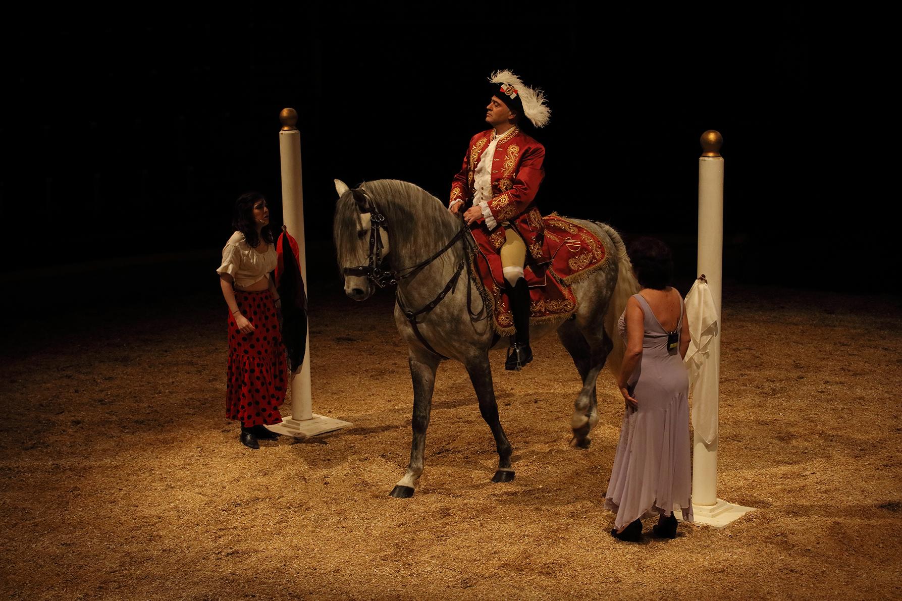 Rétrospective en image du spectacle la Légende de Severa au cirque d'hiver d'Amiens