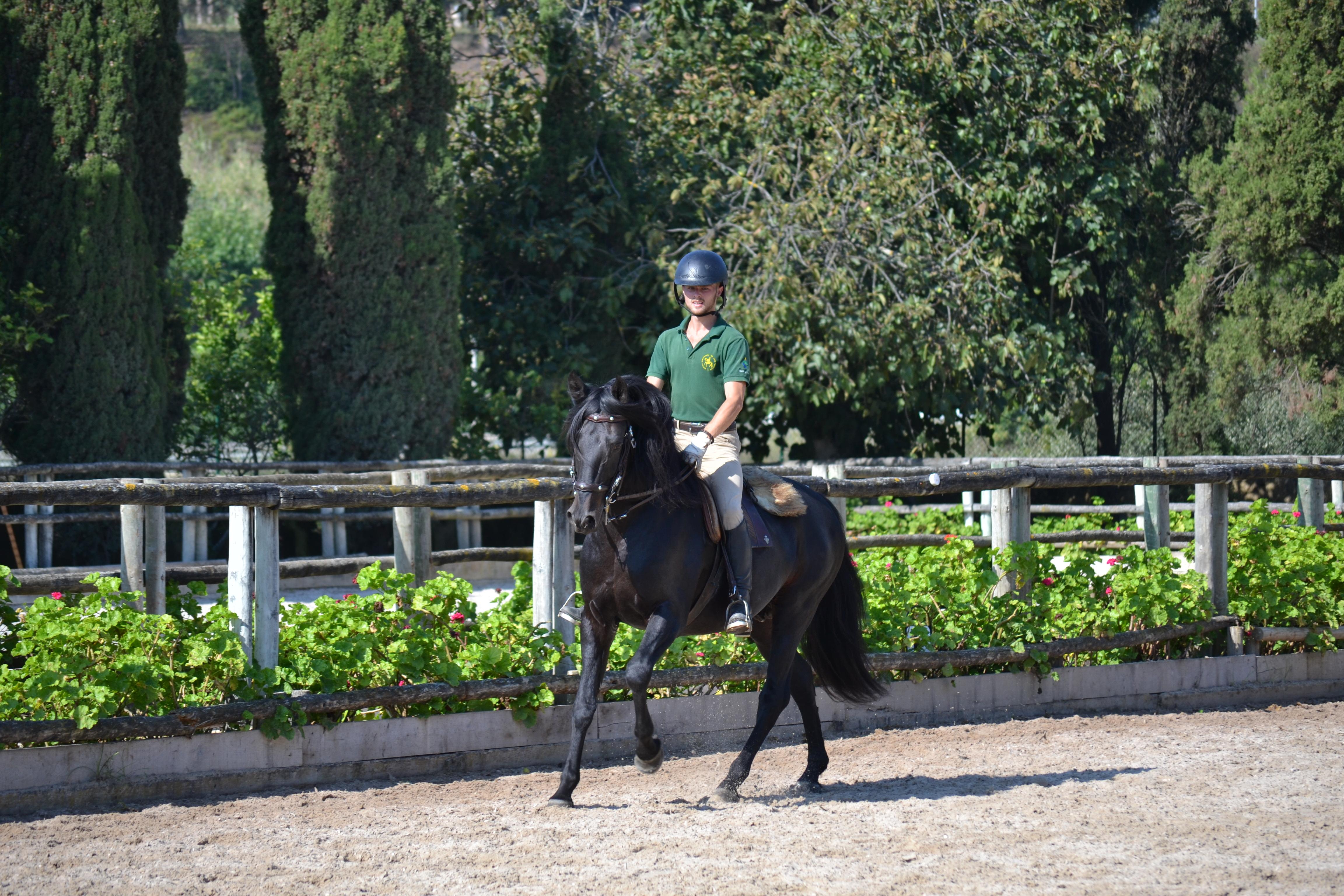 Deux apprentis écuyers français à l'Ecole Portugaise d'Art Equestre de Lisbonne