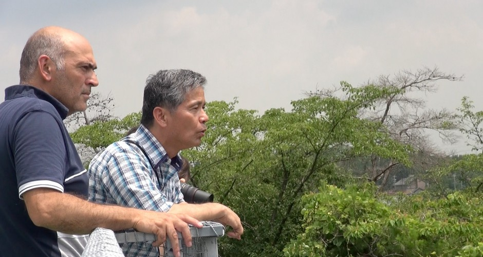 Visite du Centre de Primatologie de Kyoto