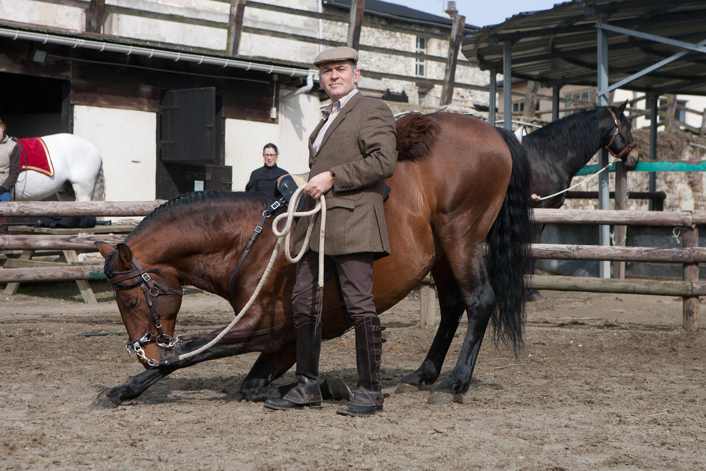 ALJEZUR, cheval Alter est une star du cinéma allemand
