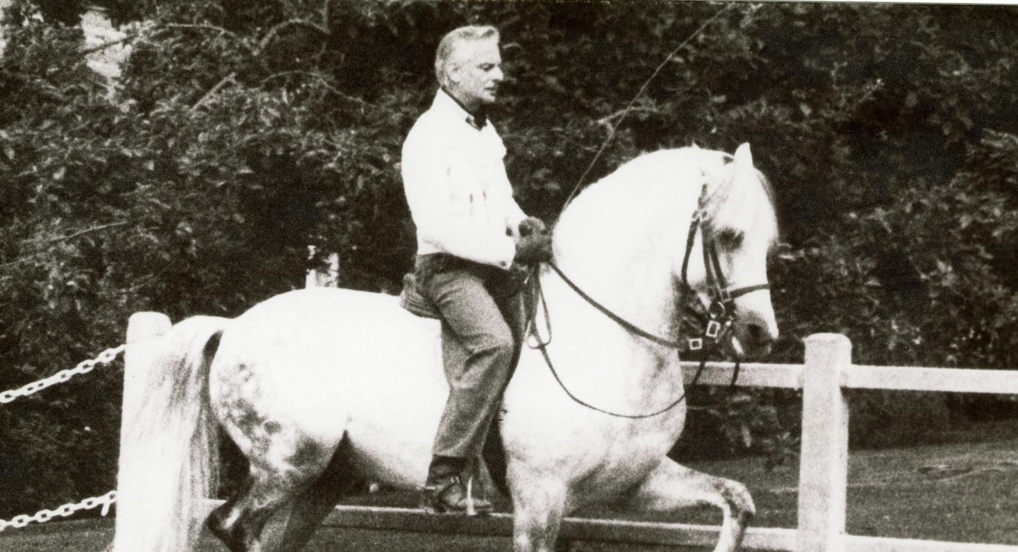 20 ans de l'Équitation portugaise en France, 26-27 novembre 2014